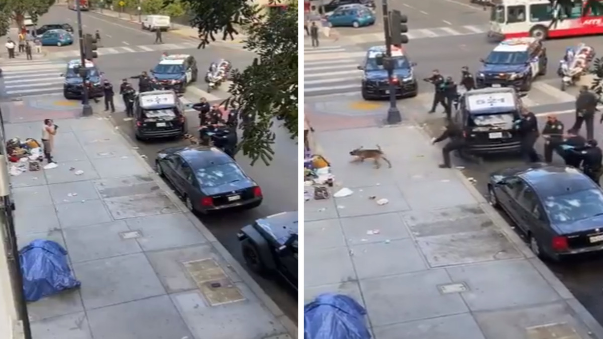 San Diego police officers shoot homeless woman
